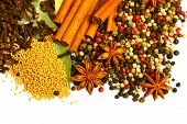 Pack Of Several Spices, Anise, Cinnamon, Pepper, Charlock