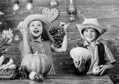 Children Near Vegetables Wooden Background. Elementary School Fall Festival Idea. Kids Girl Boy Wear poster