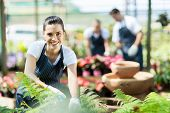 stock photo of greenhouse  - happy female nursery worker trimming plants in greenhouse - JPG
