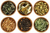 Dried Herbal Tea : Mulberry, Kaffir Lime Peel, Chrysanthemum, Lemongrass, Chinese Jasmine, Stevia Te