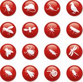 stock photo of pest control  - a set of sixteen internet button icons - JPG