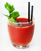 stock photo of bloody mary  - Cocktail  - JPG