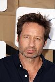 David Duchovny at the CBS, Showtime, CW 2013 TCA Summer Stars Party, Beverly Hilton Hotel, Beverly H