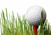 foto of dimples  - Golf ballon tee in grass with white background - JPG
