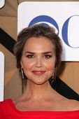 Arielle Kebbel at the CBS, Showtime, CW 2013 TCA Summer Stars Party, Beverly Hilton Hotel, Beverly H
