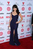 Vanessa Villela at the 2013 NCLR ALMA Awards Arrivals, Pasadena Civic Auditorium, Pasadena, CA 09-27