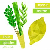 stock photo of sukkot  - Four species  - JPG