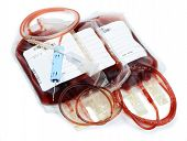 foto of bloody  - transfusion bloody - JPG