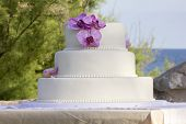 pic of wedding feast  - Simple but beautiful wedding cake and an ocean and some trees in the background - JPG