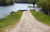 stock photo of swamps  - Flooded road that leads into the swamp - JPG
