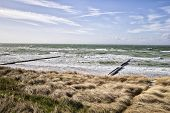picture of dune grass  - Coast with dune grass Baltic Sea and sky on a stormy day near Ahrenshoop Germany - JPG