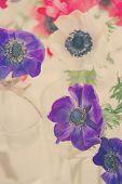 image of windflowers  - blue and white anemone fresh flowers retro toned - JPG