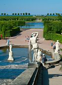 Fountain In Peterhof Palace