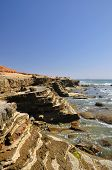 stock photo of bluff  - The coastline of Point Loma in San Diego is a great place to hike over bluffs and explore seaside tidepools - JPG