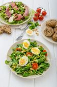 stock photo of rocket salad  - Two salad  - JPG