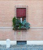pic of ferrara  - Ancient architecture in the downtown of Ferrara - JPG