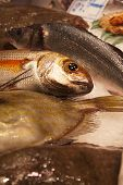 picture of stall  - Close up of fresh fish at a fishmonger stall in an indoor market - JPG