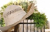 pic of planters  - rustic straw hat on a white planter with green plants - JPG