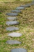 picture of stepping stones  - Stepping stones on grass with many fallen leaves.