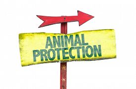 stock photo of animal cruelty  - Animal Protection sign isolated on white - JPG