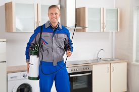 pic of pest control  - Young Happy Pest Control Worker With Insecticide Sprayer In Kitchen Room - JPG