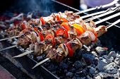 pic of flame-grilled  - Juicy slices of meat with sauce prepare on fire (shish kebab).