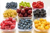 Collage Of Different Fruits And Berries Isolated On White. Blueberries, Cherries, Blackberries, Grap poster