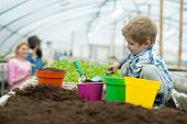 Soil Analysis. Little Boy Making Soil Analysis In Greenhouse. Soil Analysis For Planting Trees. Soil poster