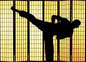 Постер, плакат: Человек практикующих боевое искусство кунг фу удар