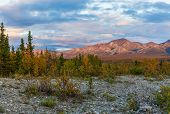 The Scenic Landscape Of Denali National Park Alaska In Early Autumn poster