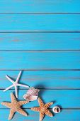 Summer Beach Seashore Background Starfish Blue Old Wood Vertical poster