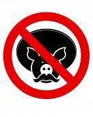 picture of the mexican swine flu  - Single joke - JPG