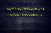 Positive Inspiring Quote On Neon Sign Against Brick Wall Dont Go Through Life Grow Through Life. poster
