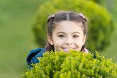 Playful Little Girl With Trendy Hairstyle. Parks And Outdoor. Autumn Weather. Cypress Tree. Happy Pl poster
