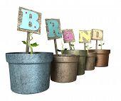 Grow Your Brand Flowerpot poster