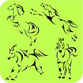 Light Horses - vector set.