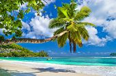 stock photo of unique landscape  - idyllic tropical scenery  - JPG