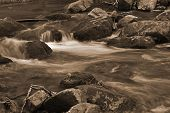 stock photo of brook trout  - Sepia image of a mountain trout stream in Southwestern Virginia - JPG