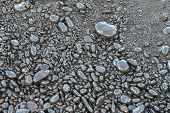 Пляж новороссийск галька фото