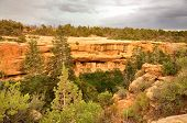 picture of cortez  - View of Cliff Palace Mesa Verde State Park - JPG