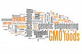 stock photo of genetic engineering  - Genetically modified food  - JPG