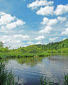 stock photo of marshlands  - beautiful springlike marshland and pond german landscape - JPG
