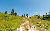 foto of velika  - Velika planina - JPG