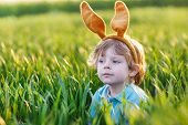 pic of ear  - Cute little child with Easter bunny ears playing in green grass on sunny spring day celebrating Easter holiday - JPG