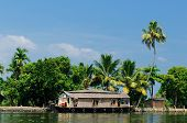 pic of alleppey  - Coco trees reflection and beautifoull house boat at back waters of Kerala India - JPG
