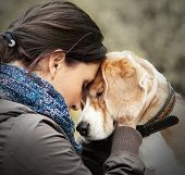 image of dog ears  - Woman with her dog tender scene  - JPG