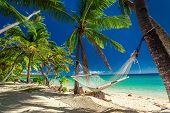 Empty hammock in the shade of palm trees on tropical Fiji Islands poster
