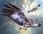 Two eagles soaring over airport as a guard against small birds and hobby UAV.  Air traffic safety th poster
