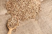 Spoon and heap of hemp seeds on sackcloth poster