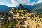Machu Picchu Illuminated By The Warm Sunset Light. Wide Angle View From The Terraces Above With Scen poster